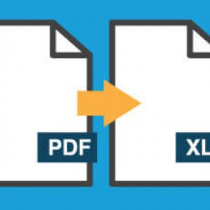 PDF Conversion to Excel®